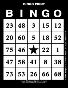 Bingo Print 11
