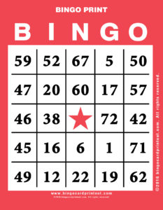 Bingo Print 12