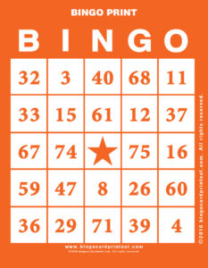 Bingo Print 2