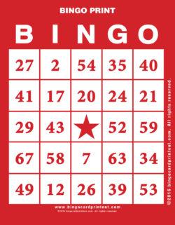 Bingo Print
