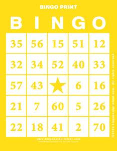 Bingo Print 3