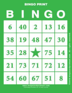 Bingo Print 4