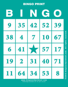 Bingo Print 5