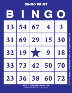 Bingo Print 6