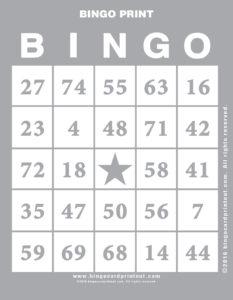 Bingo Print 9