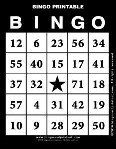 Bingo Printable 11