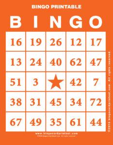 Bingo Printable 2
