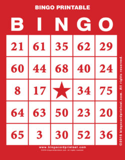 Bingo Printable