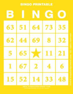 Bingo Printable 3
