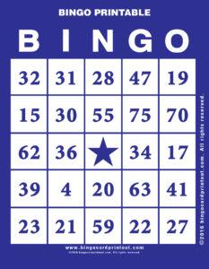 Bingo Printable 6