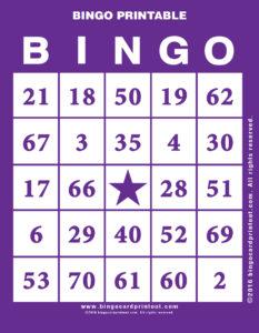 Bingo Printable 7