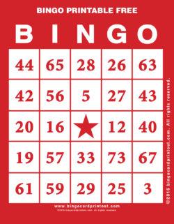 Bingo Printable Free