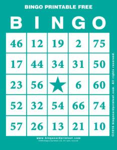 Bingo Printable Free 5