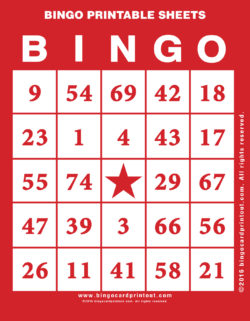 Bingo Printable Sheets
