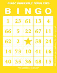 Bingo Printable Templates 3