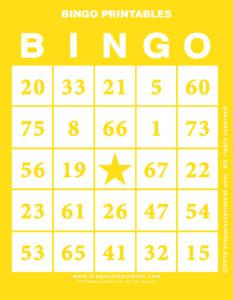 Bingo Printables 3