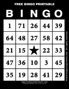 Free Bingo Printable 11