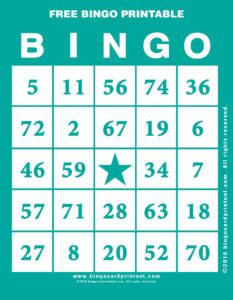 Free Bingo Printable 5