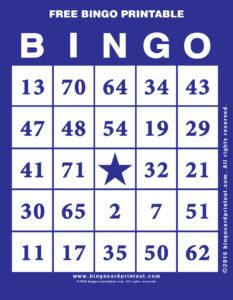 Free Bingo Printable 6