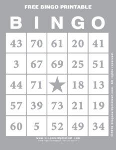Free Bingo Printable 9