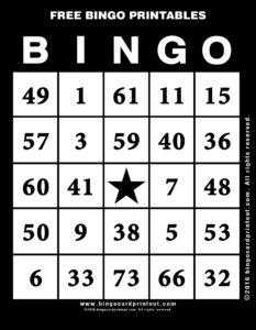 Free Bingo Printables 11
