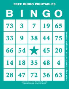 Free Bingo Printables 5