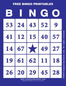 Free Bingo Printables 6