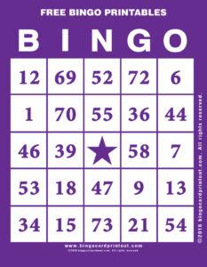 Free Bingo Printables 7