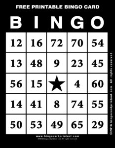 Free Printable Bingo Card 11