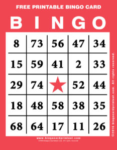 Free Printable Bingo Card 12
