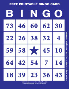 Free Printable Bingo Card 6