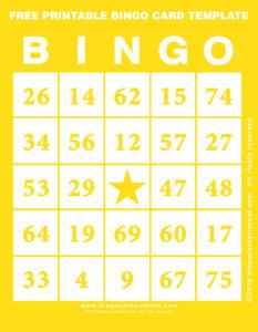 Free Printable Bingo Card Template 3