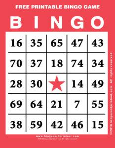 Free Printable Bingo Game 12