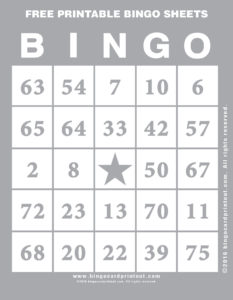 Free Printable Bingo Sheets 9