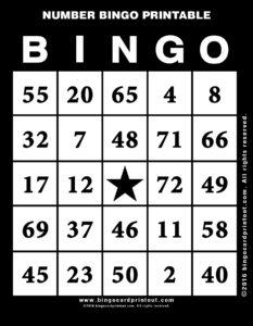 Number Bingo Printable 11
