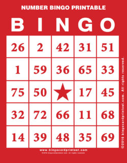 Number Bingo Printable