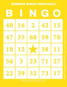 Number Bingo Printable 3