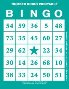 Number Bingo Printable 5