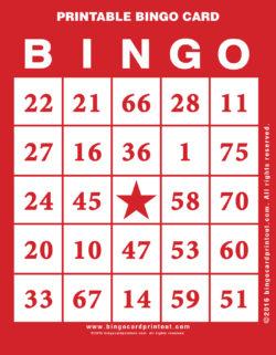 Printable Bingo Card