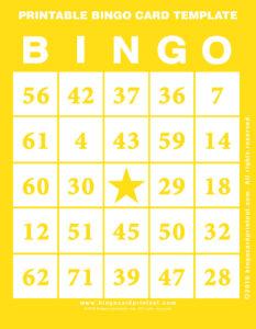 Printable Bingo Card Template 3