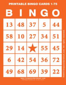 Printable Bingo Cards 1-75 2