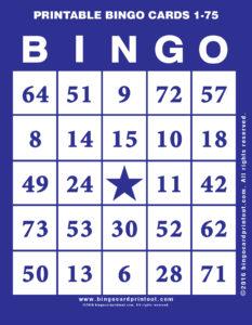 Printable Bingo Cards 1-75 6