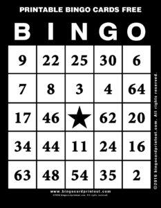 Printable Bingo Cards Free 11