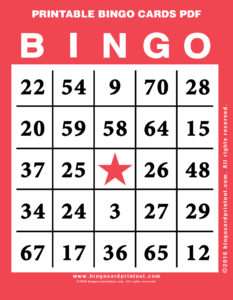 Printable Bingo Cards PDF 11