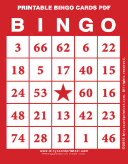 Printable Bingo Cards PDF