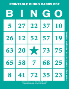 Printable Bingo Cards PDF 5