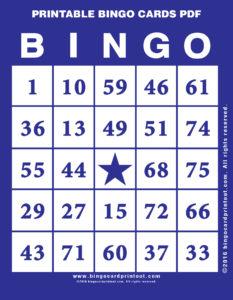 Printable Bingo Cards PDF 6