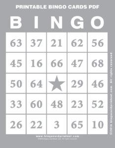 Printable Bingo Cards PDF 9