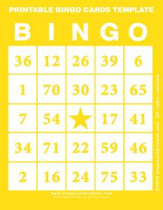 Printable Bingo Cards Template 3