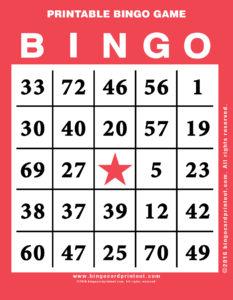 Printable Bingo Game 12